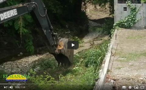 Animales y muebles arrojan a los arroyos