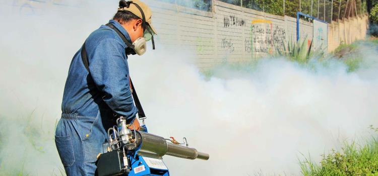 Pueden triplicarse casos de dengue