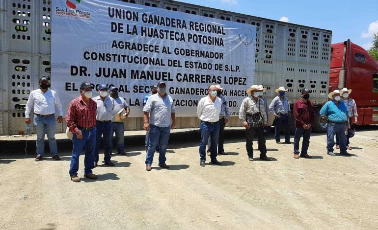 San Martín comenzará proceso de exportación