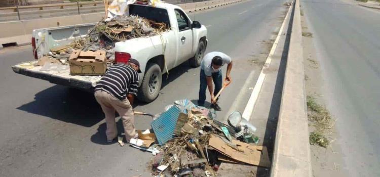 Intensifican labores de limpieza en Soledad