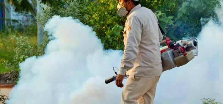 """Cuatro municipios en alarma por """"dengue"""""""
