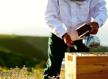 Los apicultores se capacitaron