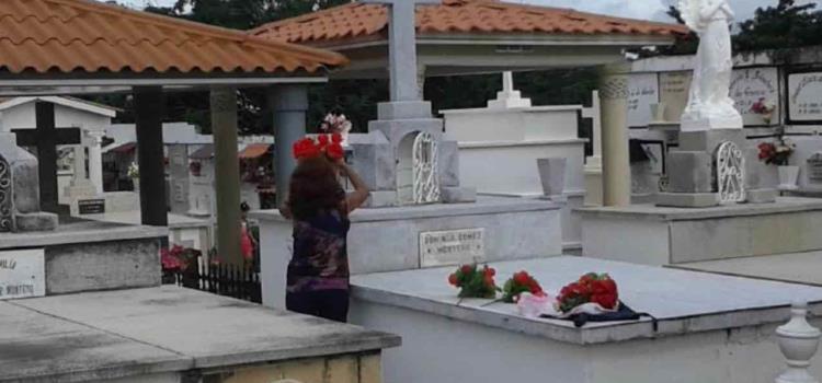 Zancudos plagan los cementerios