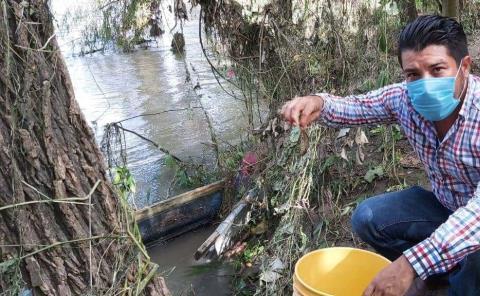 """Estudiarán al Pez """"diablo"""" en el río Moctezuma y Amajac"""