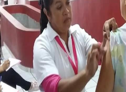 Preparan vacunación