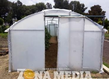 Promoverán creación de módulos agroforestales