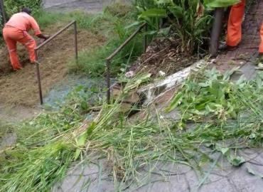 Limpiaron parque en B. San Miguel