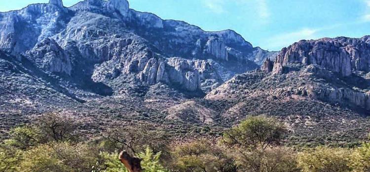A proteger Sierra de San Miguelito