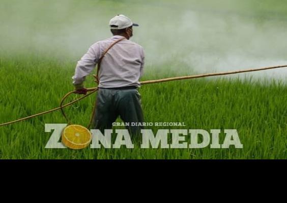 Piden a agricultores no utilizar químicos