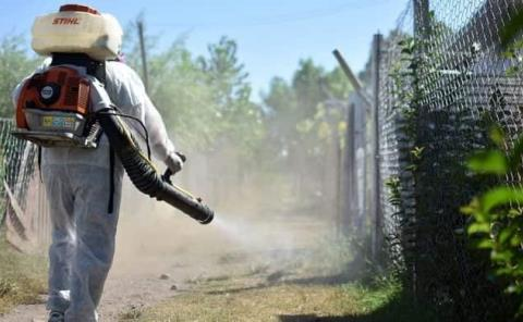 Redoblan combate para evitar dengue