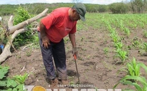 Gobiernos no apoyan a la gente del campo