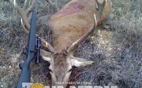 Incontrolable caza furtiva de animales