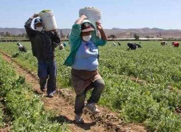 Asesoría en derechos y trámites agrarios