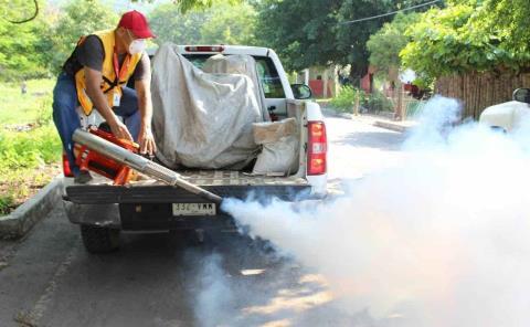 Mantendrán las acciones vs. dengue en invierno