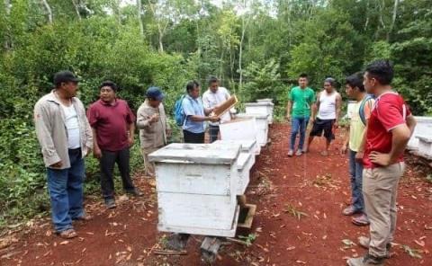 Capacitaron a los apicultores