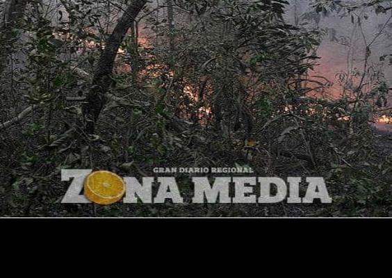 Deforestación en la Amazonía aumentó