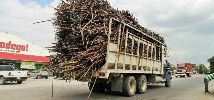 Revisarán peso a camiones cañeros
