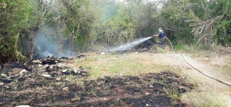Siguen realizando quemas de basura