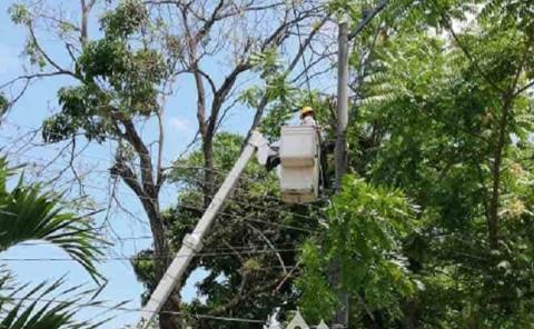 Suspenden servicio de energía eléctrica