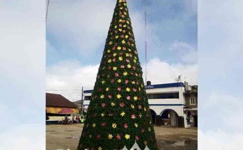 Alcaldía encendió el árbol navideño