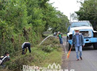 Reforestan camino a Zacatianguis