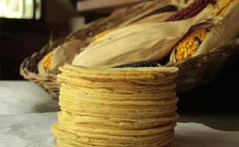 No aumentará el precio de la tortilla en enero