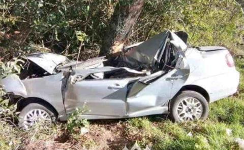 Conductor muere al chocar con un árbol