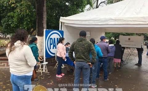 Panistas efectuaron votaciones internas