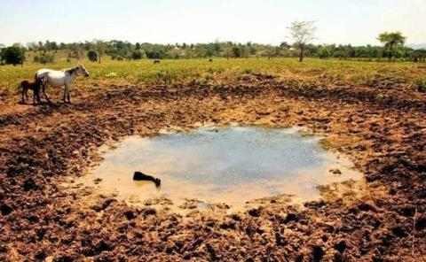 Prevalece sequía en la región