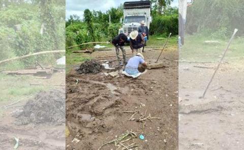 Chiqueros dañan red del drenaje
