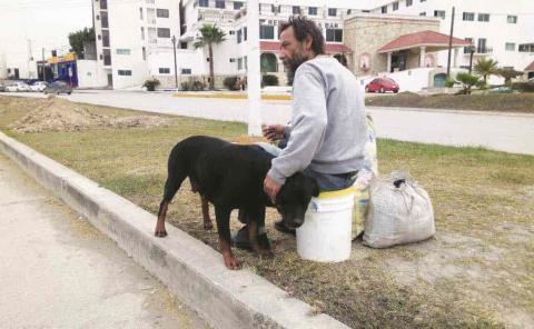 Perros pueden contraer Covid