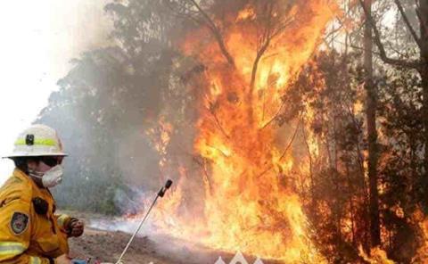 Evacuan a miles por incendio forestal