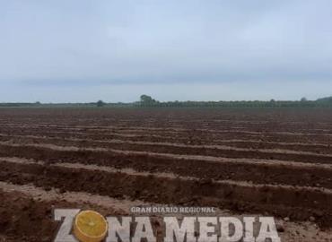 Preparan tierras para cultivarlas