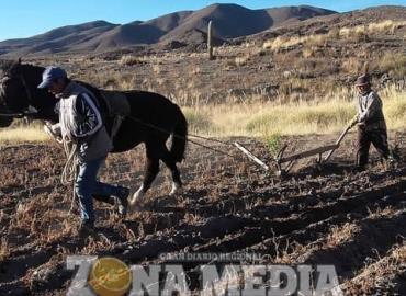 Prevén año difícil en campo y ganadería