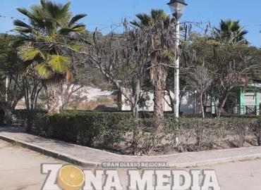 Drogadictos invaden la plaza Santa Elena