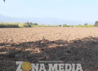 Examinan tierras para cultivar maíz