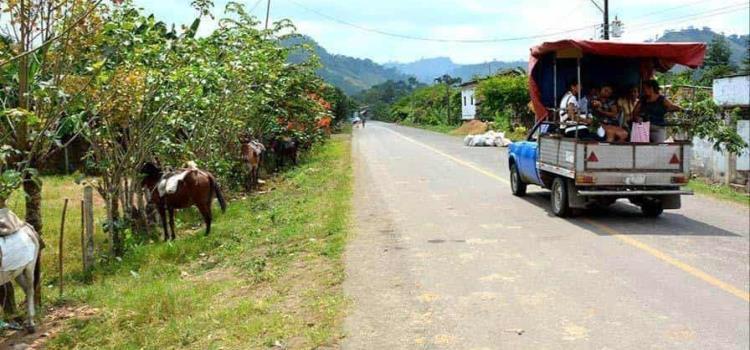 Funcionario ruletea un vehículo oficial