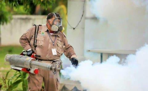 Hubo 391 casos de dengue en el 2020