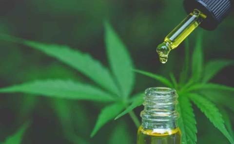 Marihuana contra el coronavirus