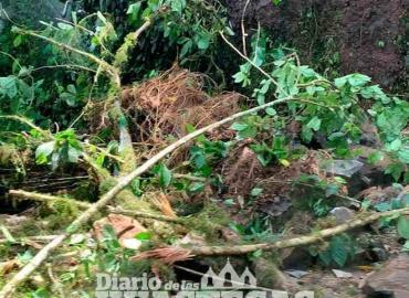 Retiraron ramas y  piedras en caminos