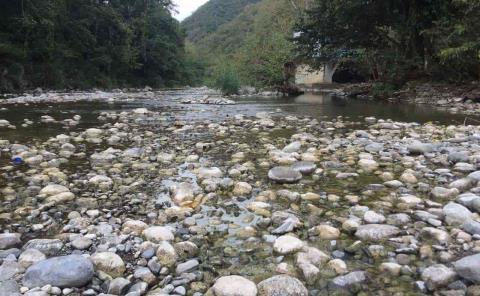 Preocupa bajo nivel del río