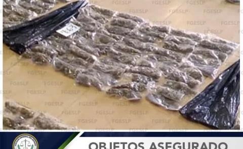 En cateo: Marihuana y otra droga