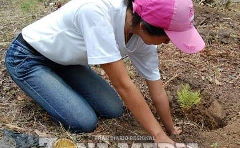 Urgente reforestar cabecera municipal