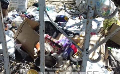 Fauna nociva en las casas abandonadas