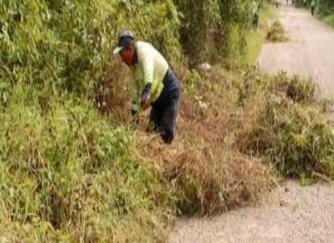 Limpia tramo carretero San Felipe – Las Piedras