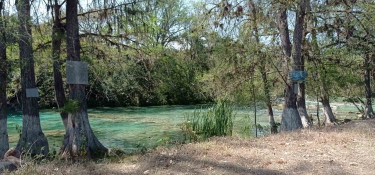 Parques caros y en abandono