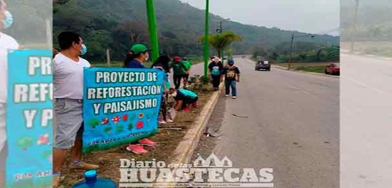 Hace acciones de reforestación