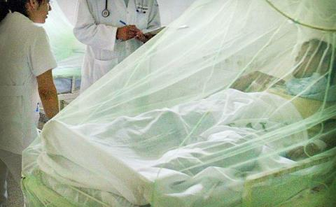 Hubo 394 casos de dengue: SSA