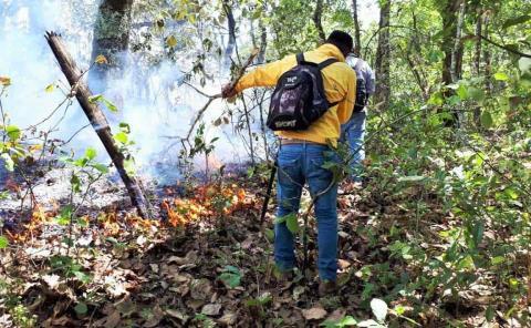 Brigadas rurales no sofocarán incendios