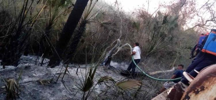 Setenta hectáreas consumió incendio